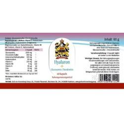 Hyaluronsäure plus Glucosamin plus Chondroitin