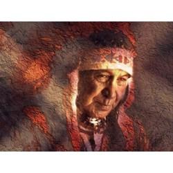 Der weltberühmte Tee der Ojibwa Indianer….. Der heilige Trank Essiac Blend
